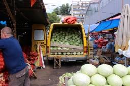 cabbage van